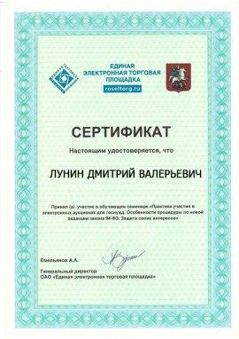 Сертификат Лунин Дмитрий Валерьевич