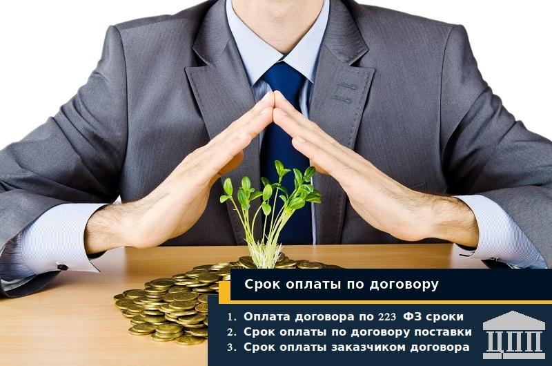 Срок оплаты договора по 223 фз